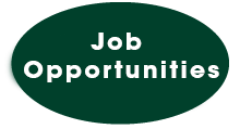 Job Opportunities button